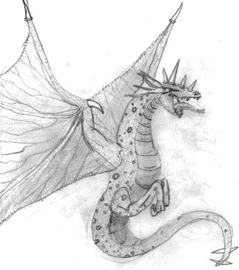 Dragon illustration by Amos, age 14